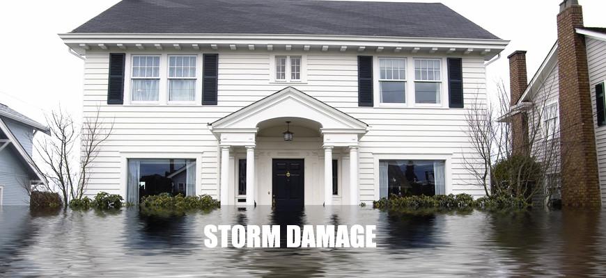 1slifer_storm